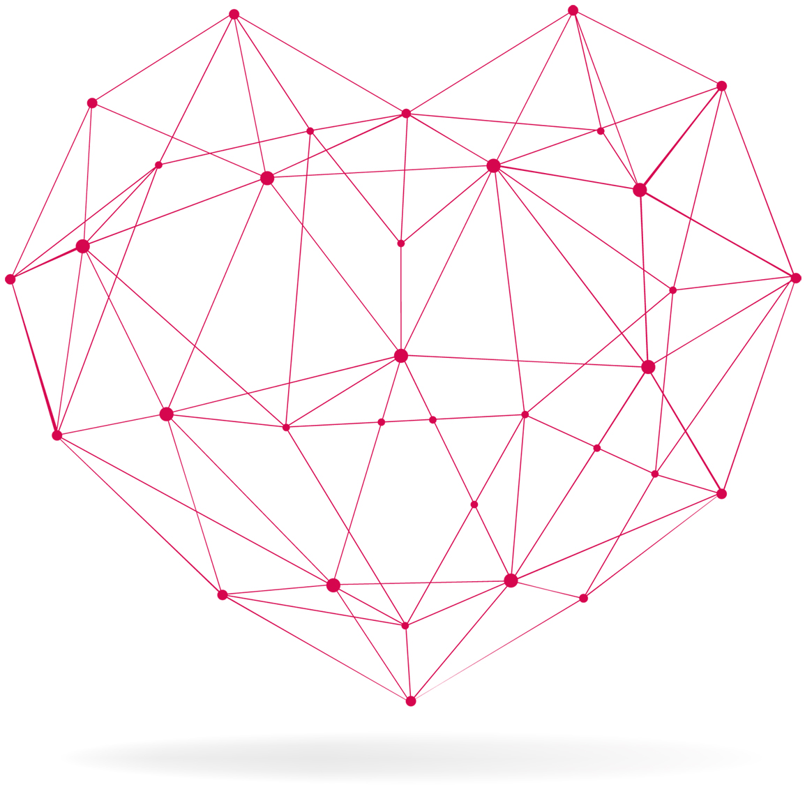 cuore struttura